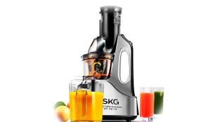 Best juicer 2016 skg-masticating-juicer-silver